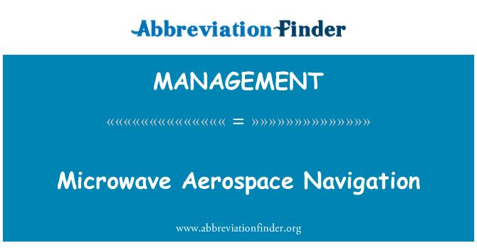 MANAGEMENT: Mikrodalga Aerospace gezinti