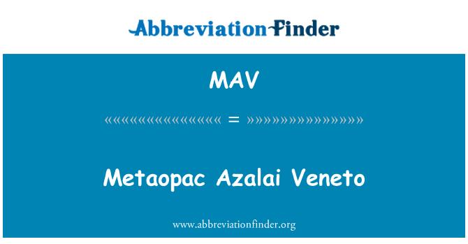 MAV: Metaopac Azalai Veneto