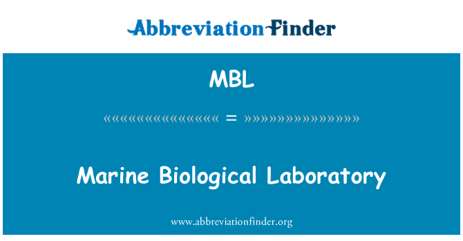 MBL: Marine Biological Laboratory