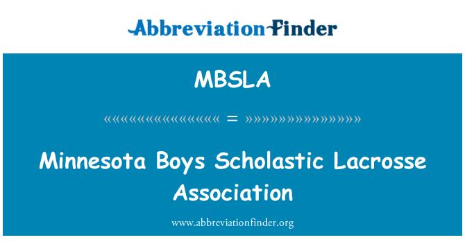MBSLA: Minnesota Boys Scholastic Lacrosse Association