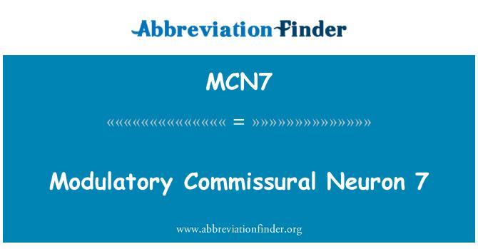 MCN7: Modulatory Komisurální Neuron 7