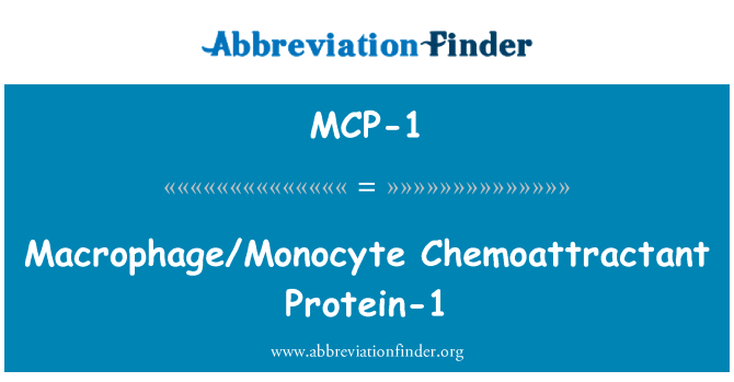 MCP-1: Macrophage/Monocyte Chemoattractant Protein-1