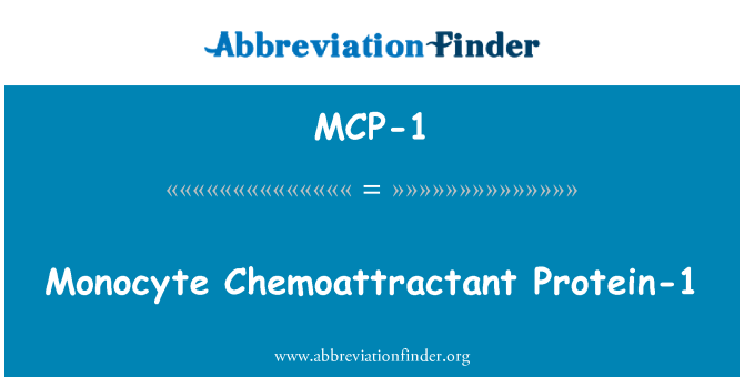 MCP-1: Monocyte Chemoattractant 단백질 1