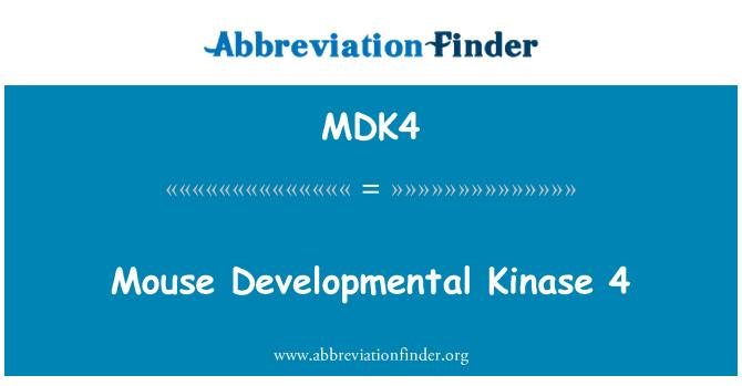 MDK4: Mouse Developmental Kinase 4