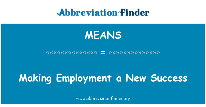MEANS: Making Employment a New Success