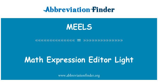 MEELS: 数学表达式编辑器光