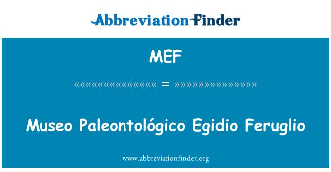 MEF: Museo Paleontológico Egidio Feruglio
