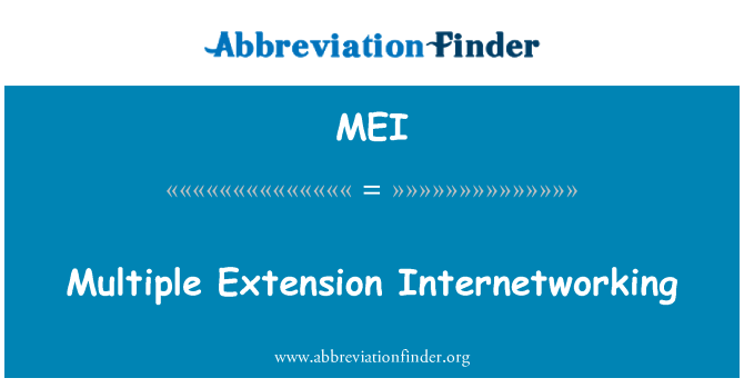 MEI: Multiple Extension Internetworking