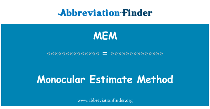 MEM: Monocular Estimate Method