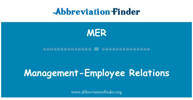 MER: Management-Employee Relations