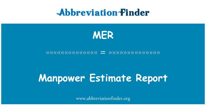 MER: Manpower Estimate Report