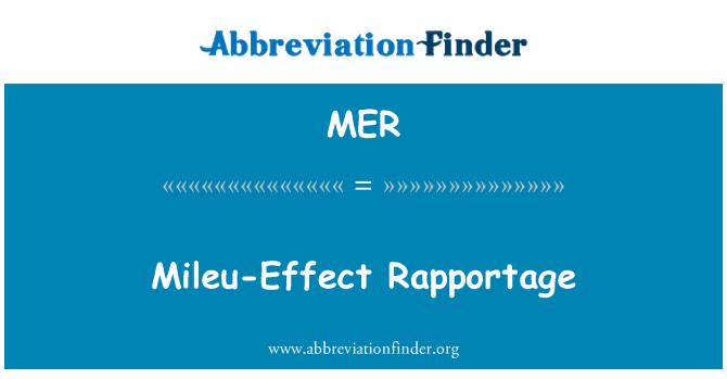 MER: Mileu-Effect Rapportage