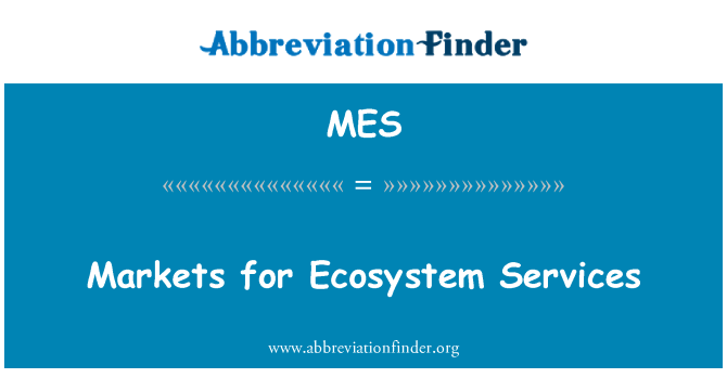 MES: Markets for Ecosystem Services