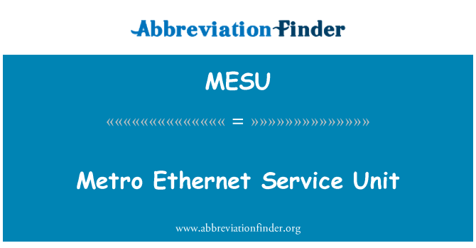 MESU: Metro Ethernet Service Unit