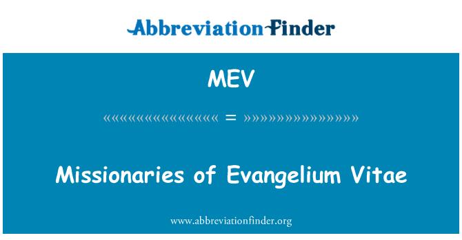 MEV: Missionaries of Evangelium Vitae