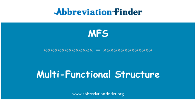 MFS: Multi-Functional Structure