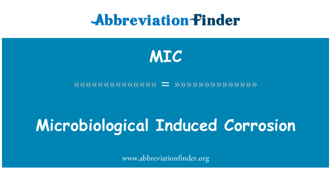 MIC: Microbiological Induced Corrosion
