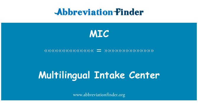 MIC: Multilingual Intake Center