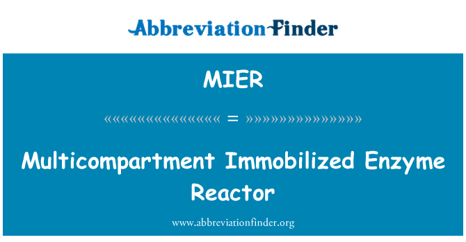 MIER: Multicompartment Immobilized Enzyme Reactor