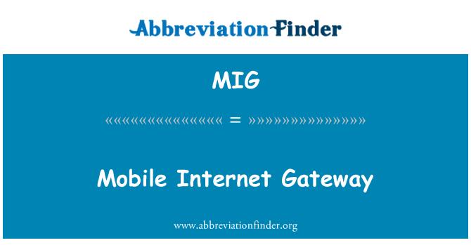 MIG: Mobile Internet Gateway