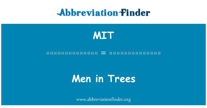MIT: Men in Trees