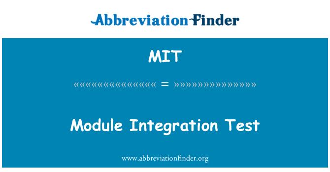 MIT: Module Integration Test