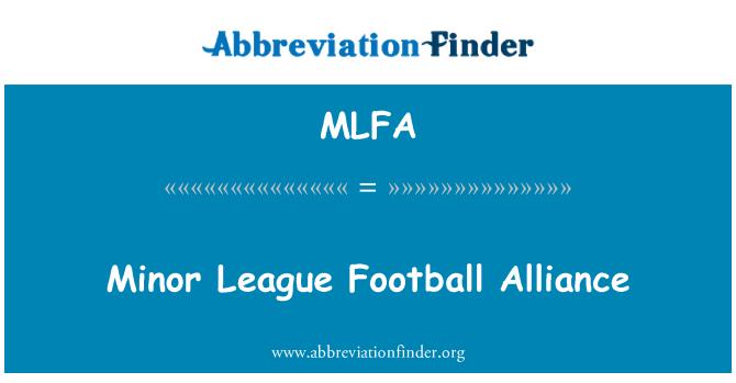 MLFA: Minor League Football Alliance