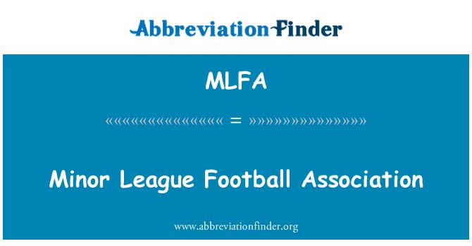 MLFA: Minor League Football Association