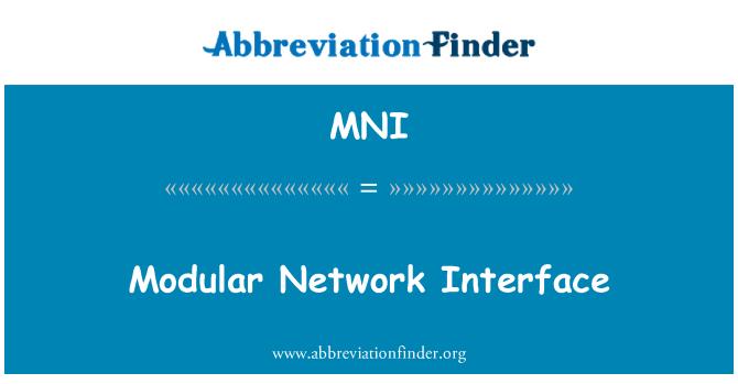 MNI: Modular Network Interface