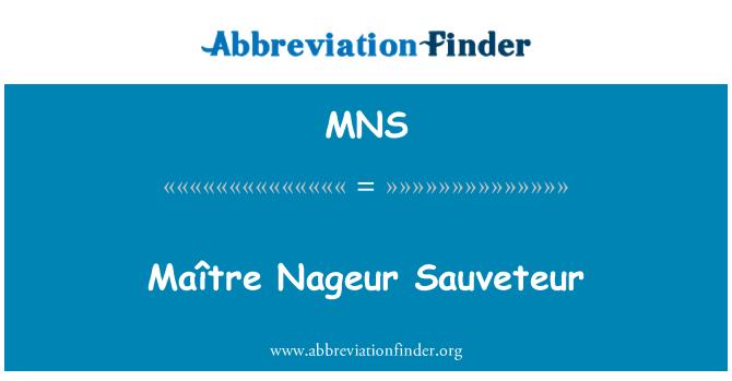 MNS: Maître Nageur Sauveteur