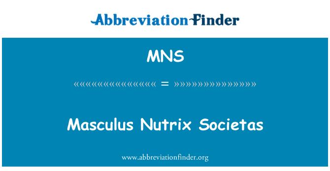 MNS: Masculus Nutrix Societas