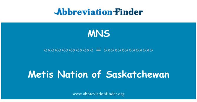 MNS: Metis Nation of Saskatchewan