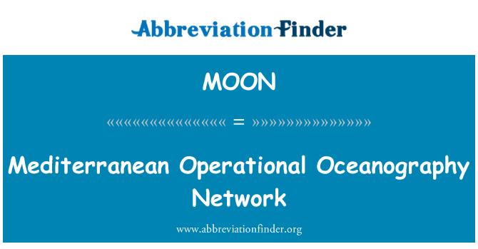 MOON: 地中海运行海洋学网络