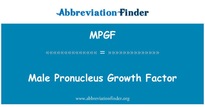 MPGF: Male Pronucleus Growth Factor