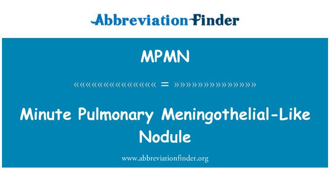 MPMN: Minute Pulmonary Meningothelial-Like Nodule