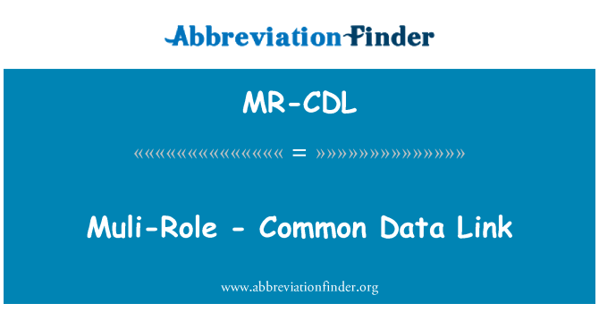 MR-CDL: 木里-角色-通用数据链