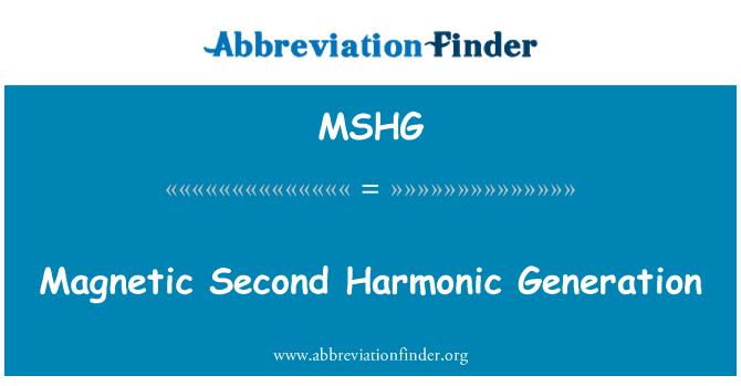 MSHG: Magnetic Second Harmonic Generation