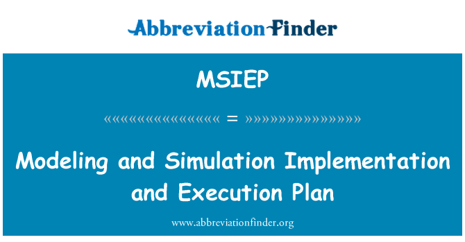 MSIEP: Modeling and Simulation Implementation and Execution Plan