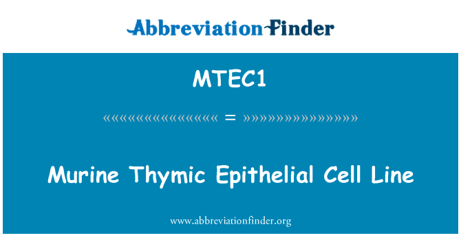 MTEC1: Murine Thymic Epithelial Cell Line