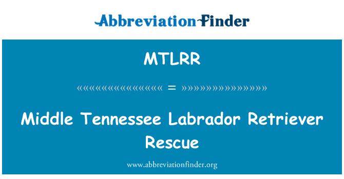 MTLRR: Middle Tennessee Labrador Retriever Rescue