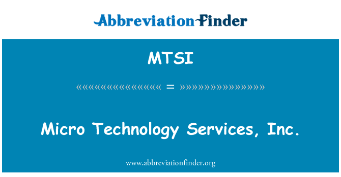 MTSI: Micro Technology Services, Inc.