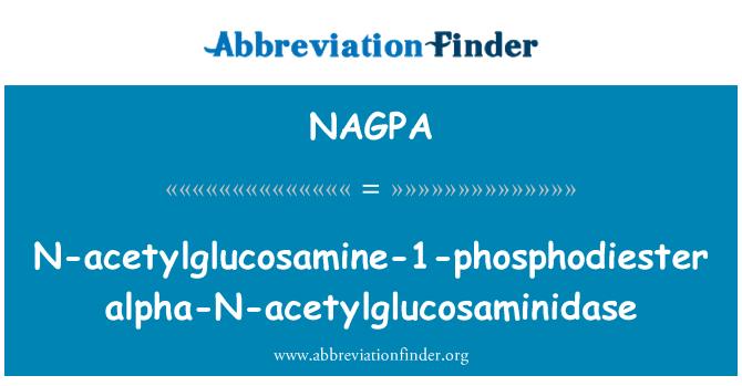NAGPA: N-acetylglucosamine-1-phosphodiester alpha-N-acetylglucosaminidase