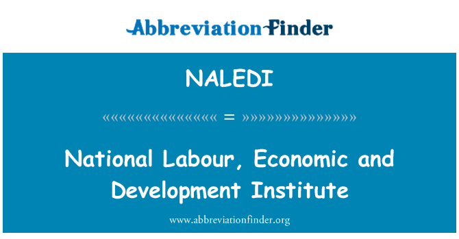 NALEDI: National Labour, Economic and Development Institute