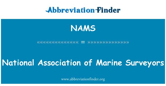 NAMS: Asociación Nacional de Marine Surveyors