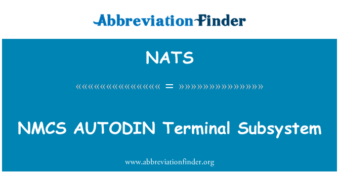 NATS: Subsistema Terminal NMCS AUTODIN