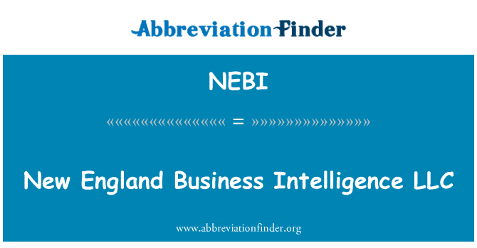 NEBI: New England Business Intelligence LLC