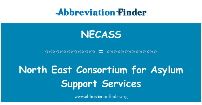 NECASS: North East Consortium for Asylum Support Services