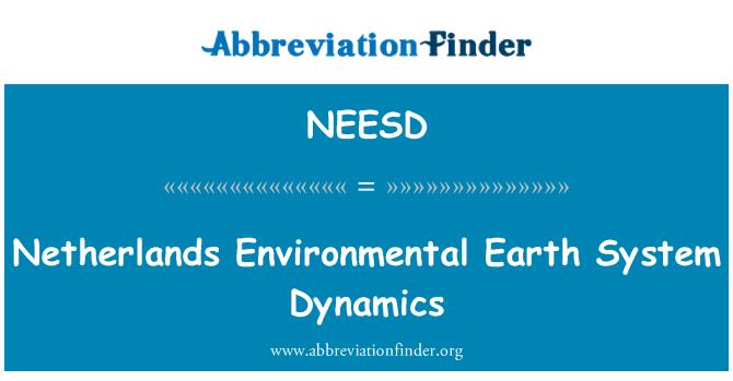 NEESD: Netherlands Environmental Earth System Dynamics