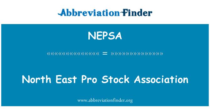 NEPSA: North East Pro Stock Association