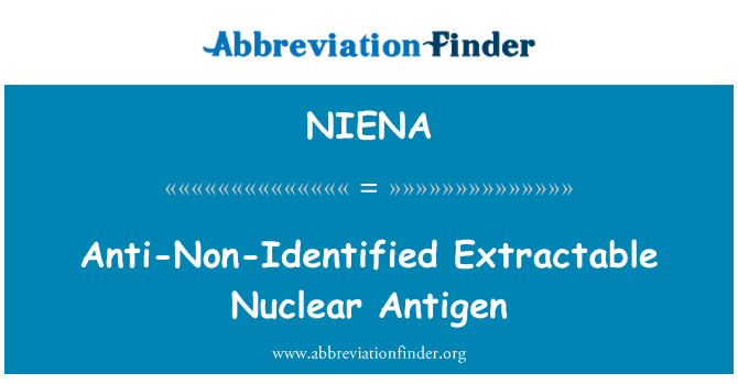 NIENA: Anti-Non-Identified Extractable Nuclear Antigen